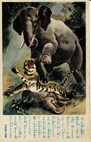 印度の密林・親象の怒り-虎 伊藤幾久造筆